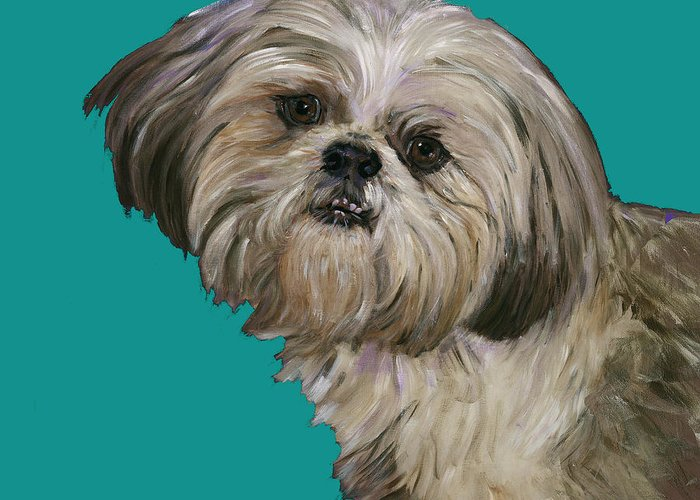 Shih Tzu Greeting Card featuring the painting Shih Tzu On Turquoise by Dale Moses