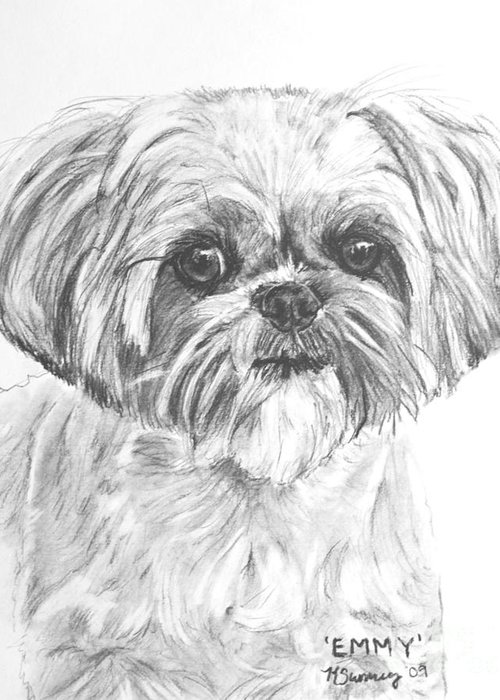 Shih Tzu Greeting Card featuring the drawing Shih Tzu Portrait In Charcoal by Kate Sumners
