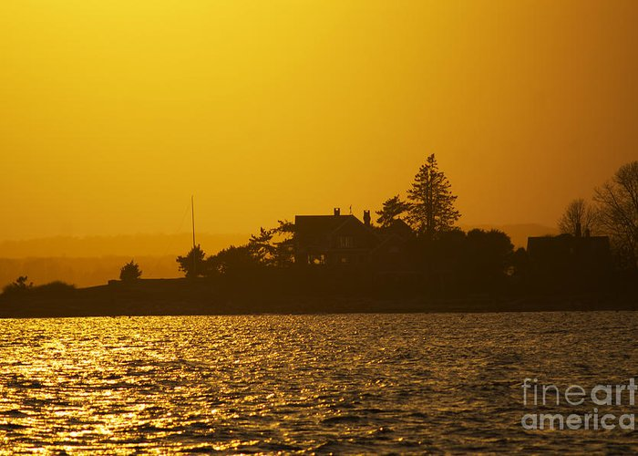 Sunset Greeting Card featuring the photograph Shine Through by Joe Geraci