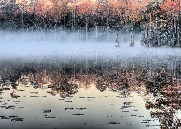 Southern Greeting Card featuring the photograph Shrouded by JC Findley