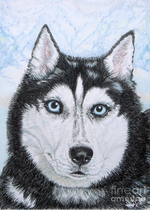 Siberian Husky Greeting Card featuring the drawing Siberian Husky by Yvonne Johnstone