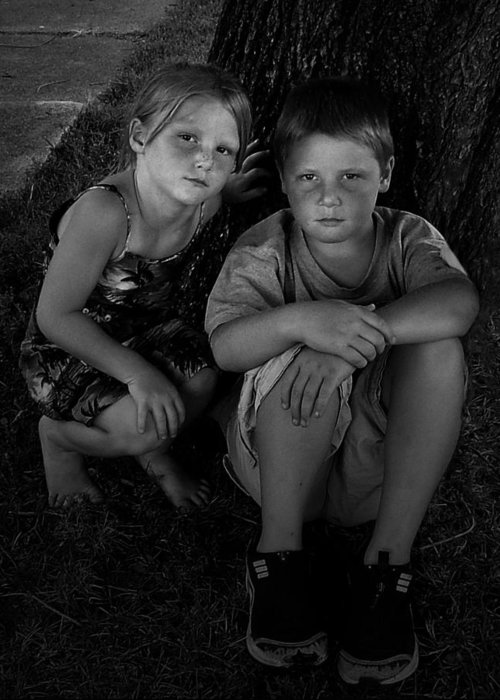 Siblings Greeting Card featuring the photograph Siblings by Julie Dant