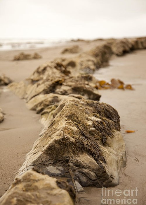 rocky Shore Greeting Card featuring the photograph Side Winding by Amanda Barcon