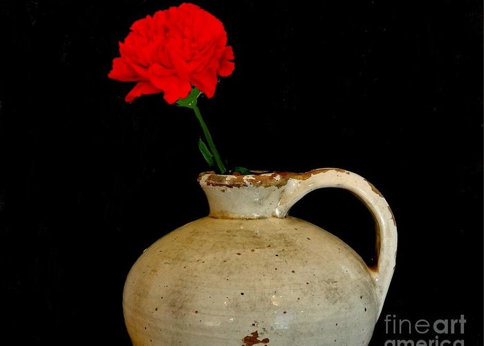 Photo Greeting Card featuring the photograph Simple Carnation In Pottery by Marsha Heiken