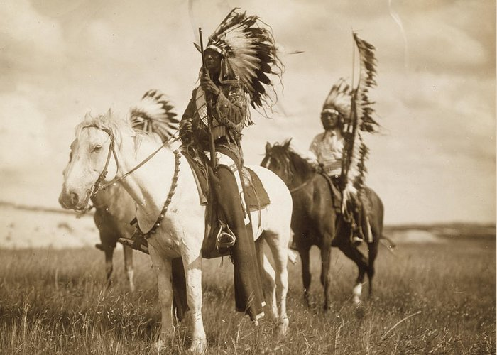Native American War Horse Greeting Cards
