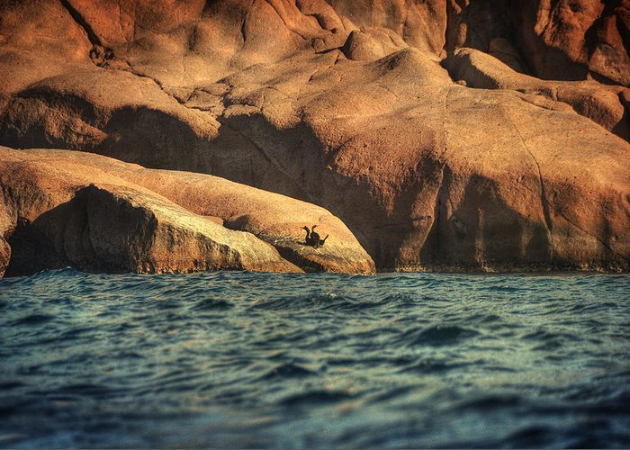 Rocks Greeting Card featuring the photograph Siren Rocks II by Taylan Apukovska