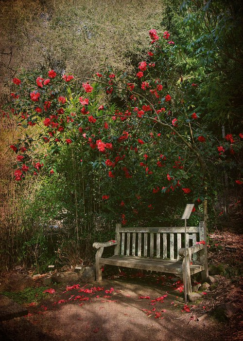 Uc Berkeley Botanical Garden Greeting Card featuring the photograph Sit With Me Here by Laurie Search