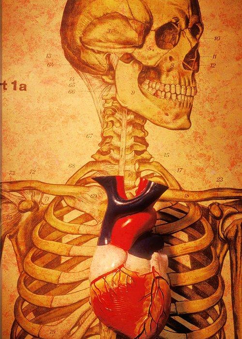 Anatomical Model Stationery