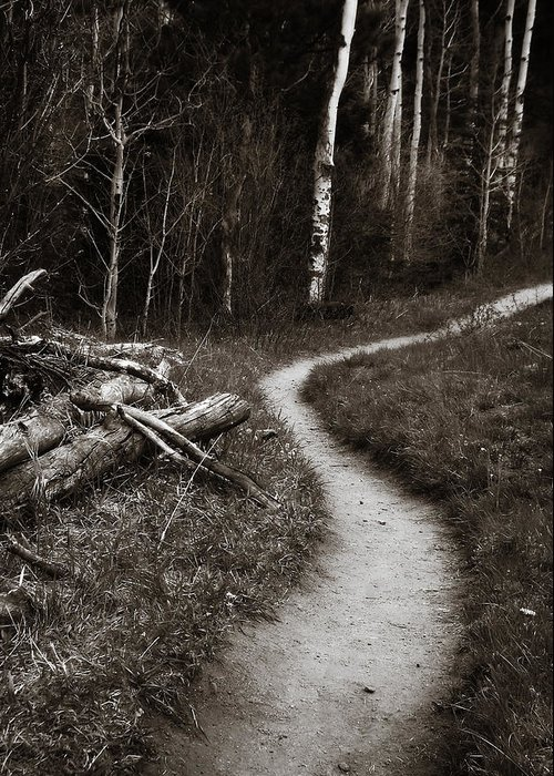 Trail Greeting Card featuring the photograph Skinny Trails by Marilyn Hunt
