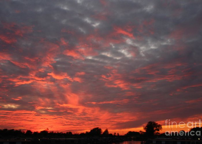 Sunset Greeting Card featuring the photograph Sky Of Fire by Linsey Williams