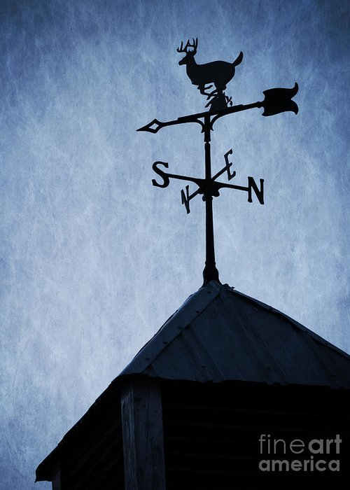 Deer Greeting Card featuring the photograph Skyfall Deer Weathervane by Edward Fielding