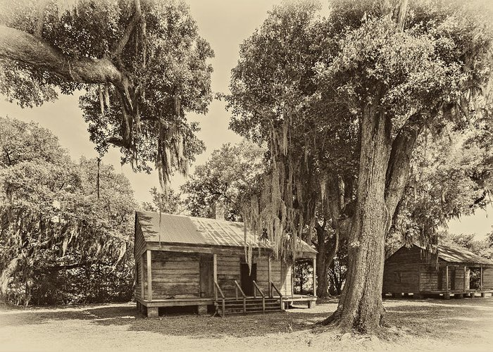 Evergreen Plantation Greeting Card featuring the photograph Slave Quarters Sepia by Steve Harrington