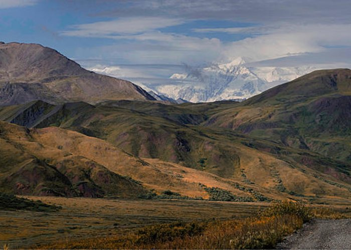 Denali National Park Greeting Card featuring the photograph Sleeping Giants by Gary O'Boyle