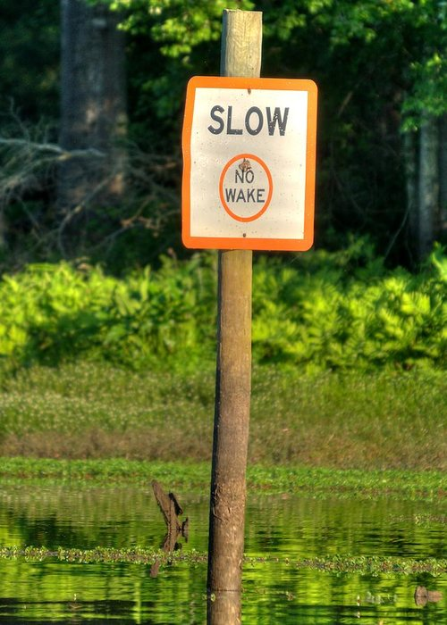 Signs Greeting Card featuring the photograph Slow No Wake by Todd Bennett