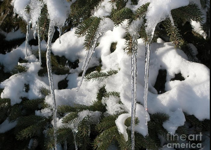Winter Greeting Card featuring the photograph Slow Snow Melt by Ann Horn