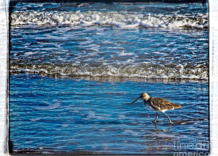 Ocean Greeting Card featuring the photograph Small Waves by Perry Webster
