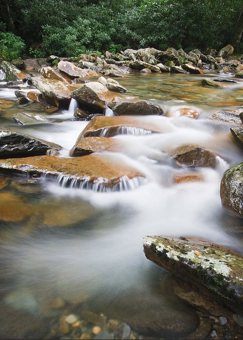 3scape Photos Greeting Card featuring the photograph Smokey Mountain Creek by Adam Romanowicz