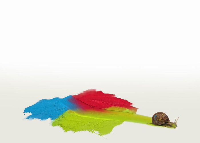 Oil Painting Greeting Card featuring the digital art Snail In Oils by Andy Walsh