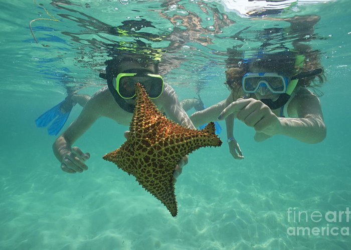 People Greeting Card featuring the photograph Snorkellers Holding A Four Legs Starfish by Sami Sarkis
