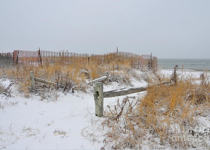 Cape Cod Massachusetts Greeting Card featuring the photograph Snow And Sand by Catherine Reusch Daley