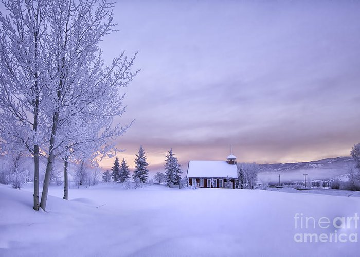 Colorado Greeting Card featuring the photograph Snow Day by Kristal Kraft