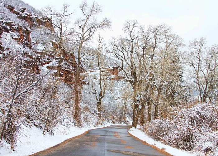 Snow Greeting Card featuring the photograph Snow Dusted Colorado Scenic Drive by James BO Insogna