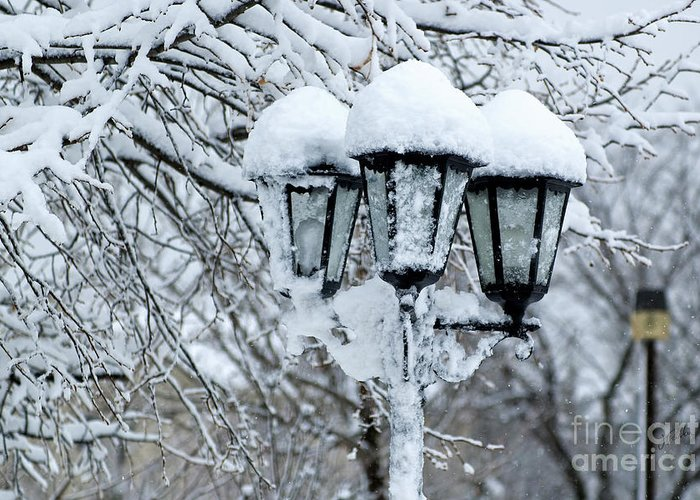 Snow Greeting Card featuring the photograph Snow On Lamps by Jessie Parker