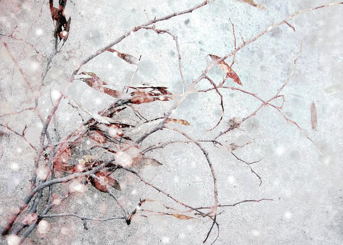 Snow Greeting Card featuring the photograph Snowfall On Branch by Ann Powell