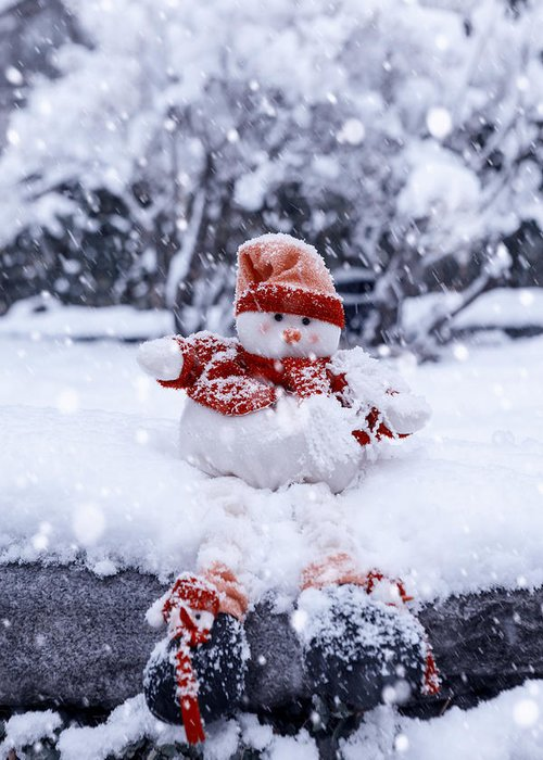 Snowman Greeting Card featuring the photograph Snowman by Joana Kruse