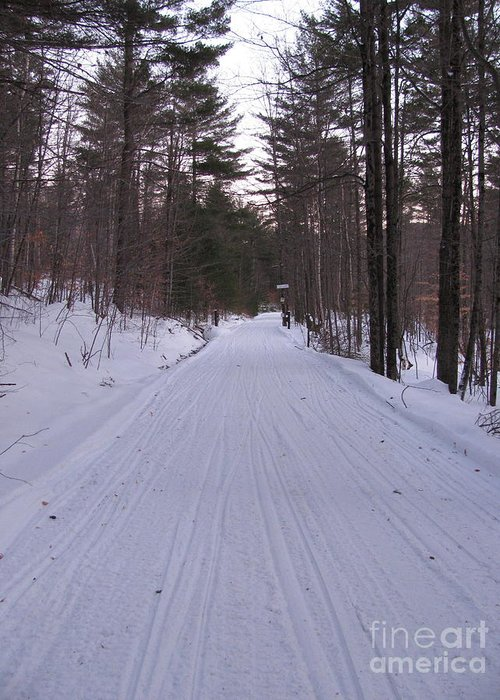 Snow Greeting Card featuring the photograph Snowmobile Trail by Nancie Johnson