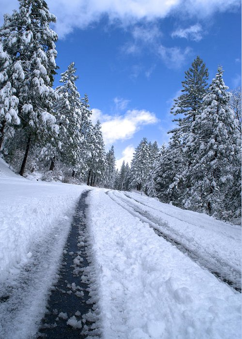Snowy Mountain Road Photograph by Don Bendickson