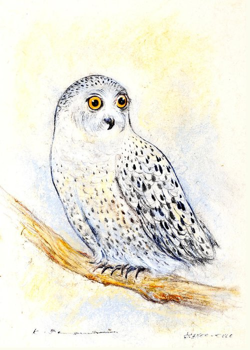 Owl Greeting Card featuring the painting Snowy Owl by Kurt Tessmann