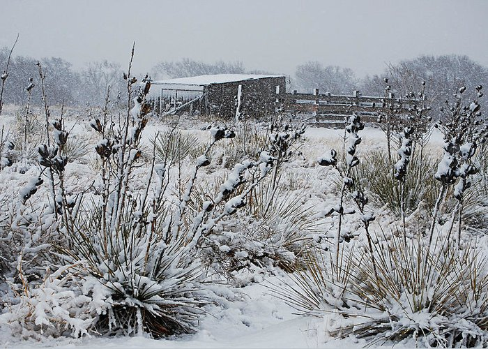 Snow Greeting Card featuring the photograph Snowy Pasture by Melany Sarafis