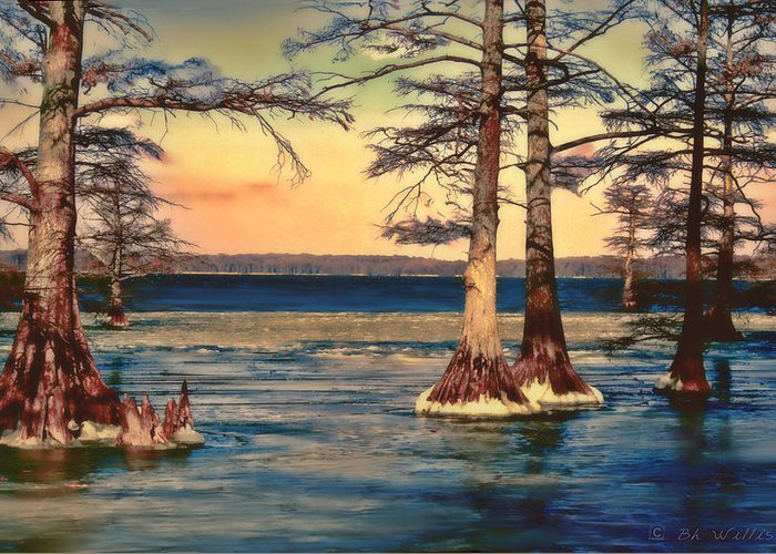 Reelfoot Lake Greeting Card featuring the photograph Snowy Reelfoot by Bonnie Willis