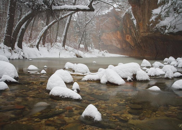 West Fork Oak Creek Canyon Greeting Card featuring the photograph Snowy West Fork by Peter Coskun