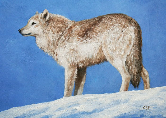Wolf Greeting Card featuring the painting Snowy Wolf by Crista Forest
