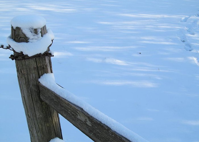 Fence Greeting Card featuring the photograph Snowy Wood Fence by Tina M Wenger