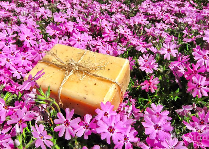 Aromatherapy Greeting Card featuring the photograph Soap On Flowers by Olivier Le Queinec