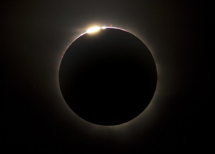 Eclipse Greeting Card featuring the photograph Solar Eclipse With Prominences by Philip Hart