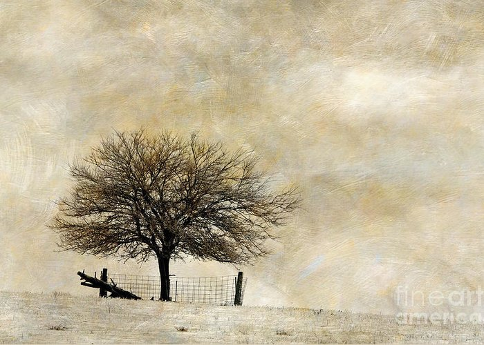 Indiana Winters Digital Art Greeting Cards