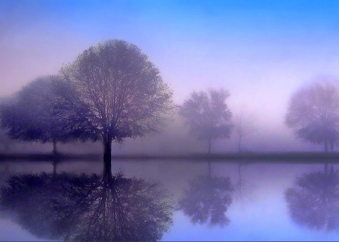 Trees Greeting Card featuring the photograph Sonata by Jessica Jenney