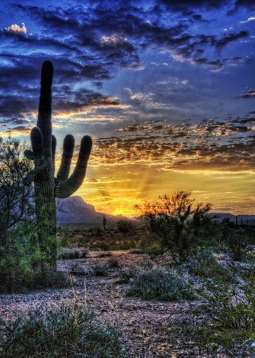 Sonoran Desert Greeting Card featuring the photograph Sonoran Sunrise by Saija Lehtonen