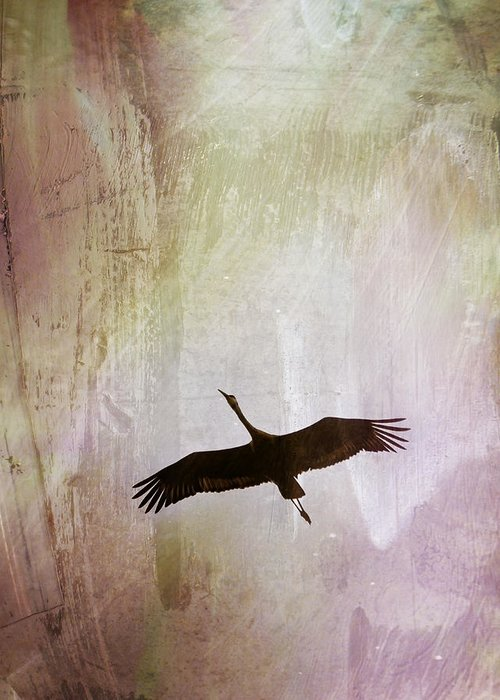 Sandhill Cranes Mixed Media Greeting Cards