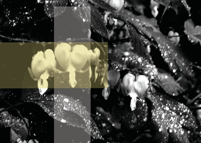 Jamie Lynn Gabrich Greeting Card featuring the photograph Soul Rain by Jamie Lynn