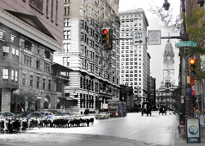 Philadelphia Greeting Card featuring the photograph South Broad Street Sheep by Eric Nagy