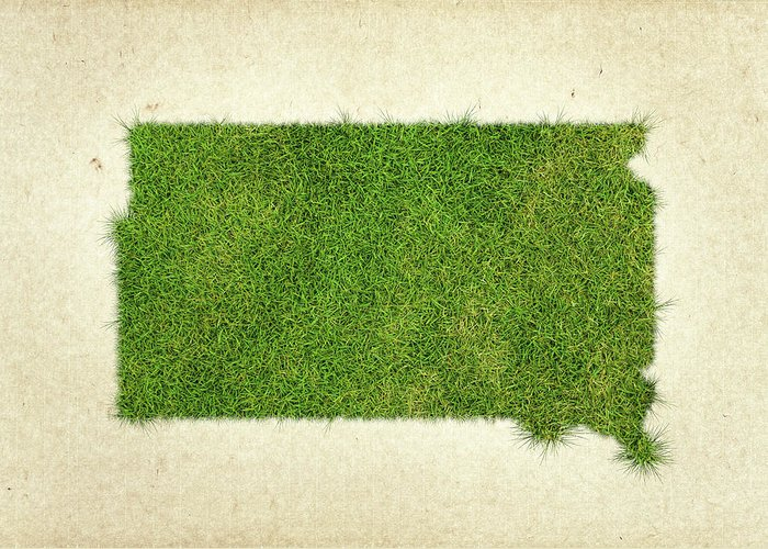 Map Of South Dakota Greeting Card featuring the photograph South Dakota Grass Map by Aged Pixel