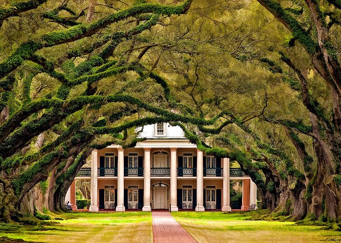 Oak Alley Plantation Greeting Card featuring the photograph Southern Class Painted by Steve Harrington