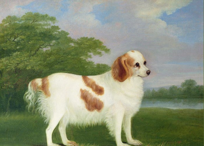 Primitive Greeting Card featuring the painting Spaniel In A Landscape by John Nott Sartorius