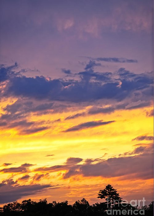 Sunset Greeting Card featuring the photograph Spectacular Sunset by Elena Elisseeva