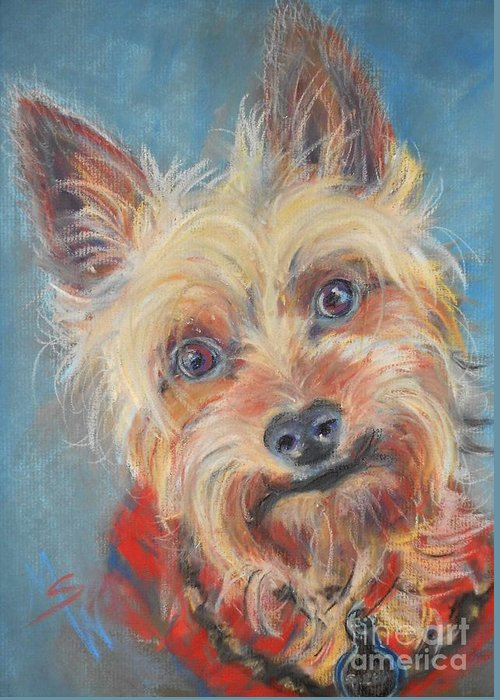 Yorkie Greeting Card featuring the pastel Spector by Mindy Sue Werth